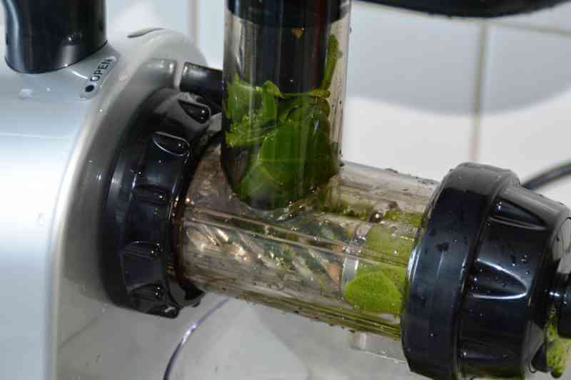 Grüne Säfte mit Omega Juicers Twin Gear TWN32s