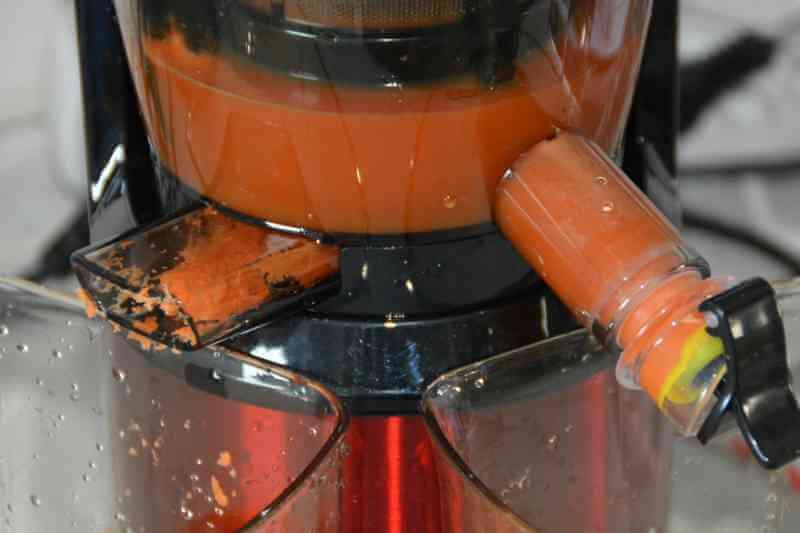 Omnijuice Saftpresse - frisch gepresster Karottenaft