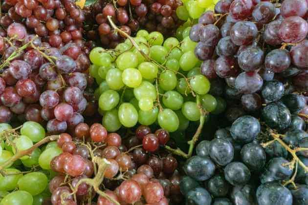Weintrauben entsaften